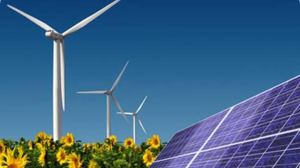 Investitie-de-15-mil--dolari-in-producerea-de-energie-regenerabila--la-Ghimbav